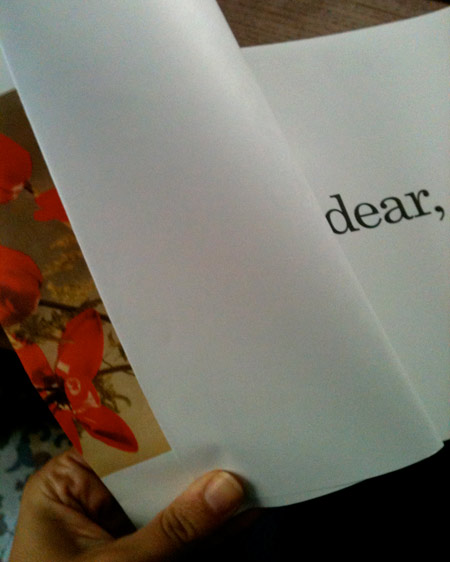 Dear, flores, arte, amor y Paul Auster | itfashion.com