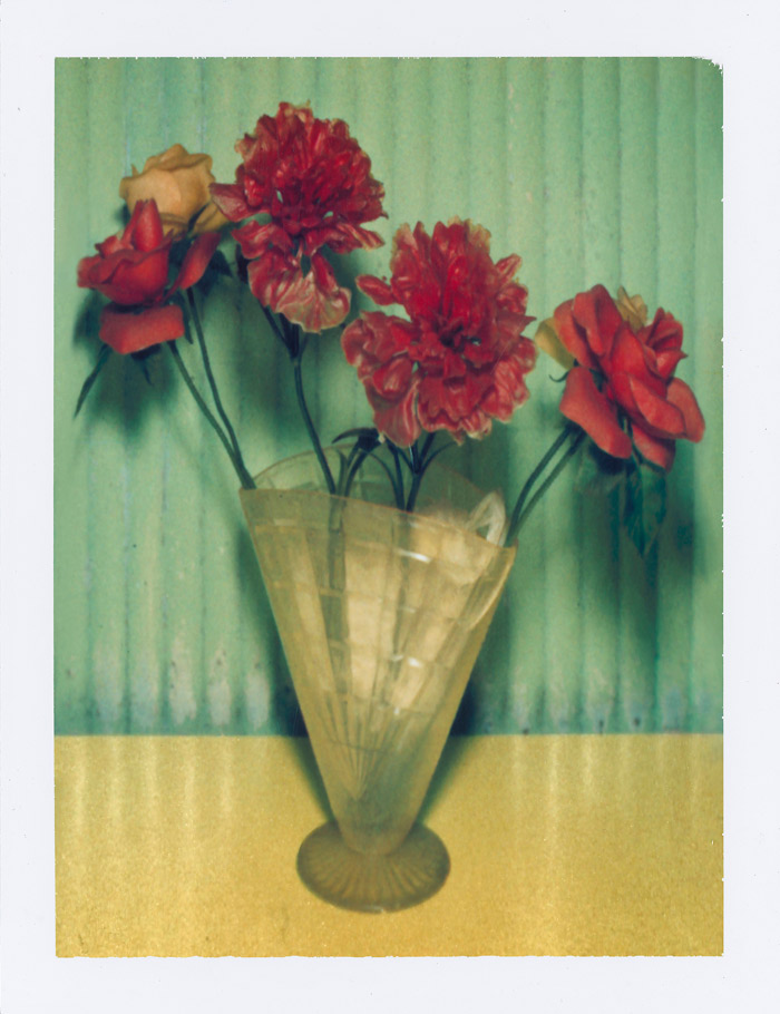 WATSON_Mexican-Flowers_New-York-City_1996_polaroid