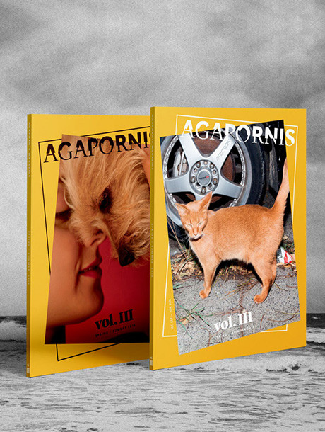 cover_agapornis