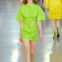 Emilio Pucci ss2017 Greenery cover